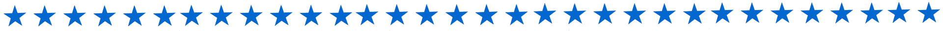 Blue Star Brewery Divider Line
